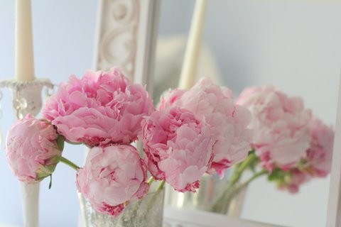 Blissfulpinkpeonies 405